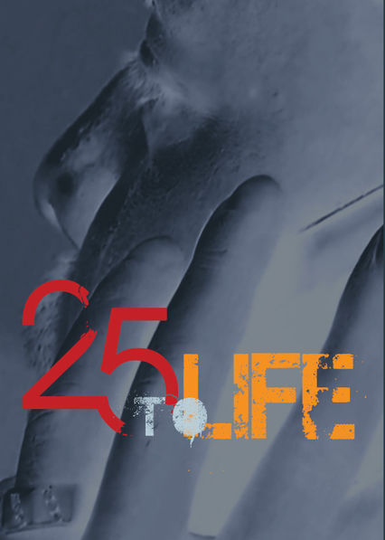 25 to Life on Netflix USA