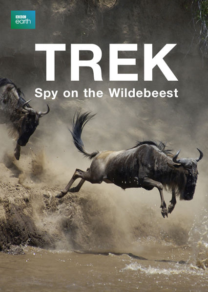 Trek: Spy on the Wildebeest