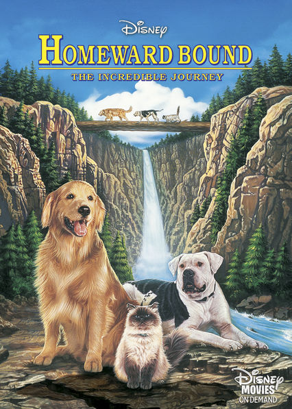 Homeward Bound on Netflix USA