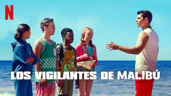 Los vigilantes de Malibú (2019)