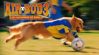 Air Bud 3: Los cachorros de Buddy (2000)