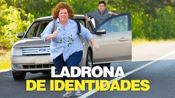 Ladrona de identidades (2013)