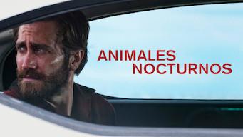 Animales nocturnos (2016)