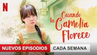 Cuando la camelia florece (2019)